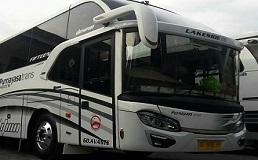 Bus Purnayasa Trans